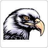eagle54